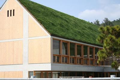 трава на крыше дома